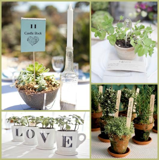 decoracao-casamento-sustentavel-plantas-vivas